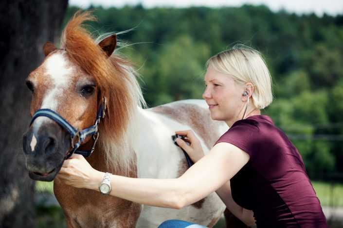 Akupunktur Pferd Atemwegserkrankung