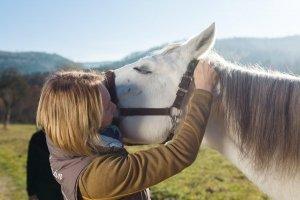 Ina Hofheinz Osteopathie Pferd